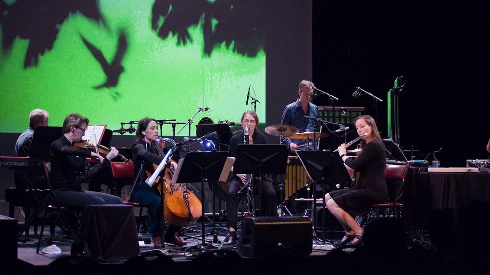 Orchester, Musikerinnen, grüne Lichtwand