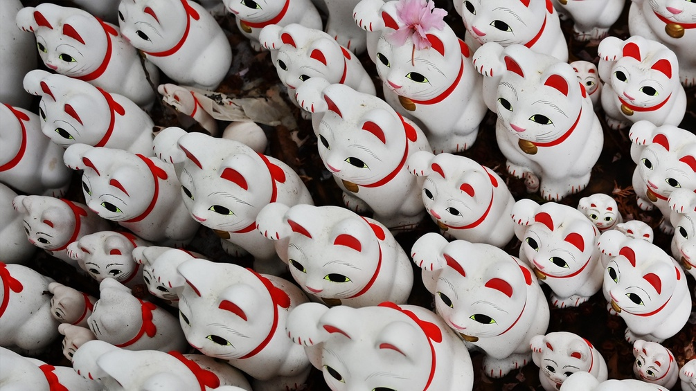 Many white waving cats figures from a bird's eye view.