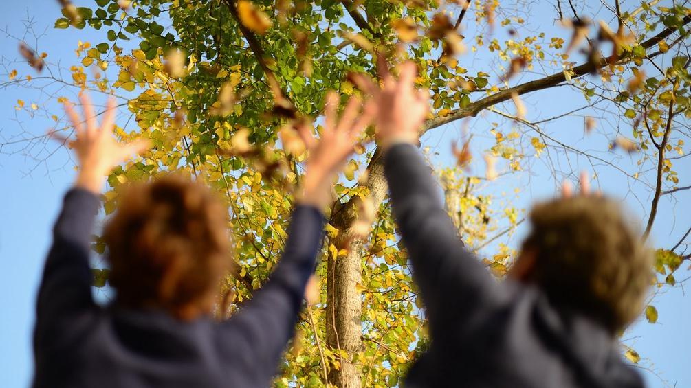 Elke Tschaikner und Christian Scheib werfen Blätter