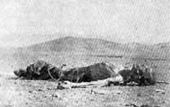 Leichnam eines armenischen Flüchtlings