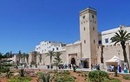 Gebäude in Marokko, Palmen