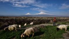 Landschaft bei Berg Ararat