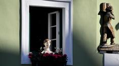 Dekoriertes Fenster beim Narzissenfest in Bad Aussee
