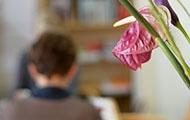 Blumen im Hintergrund Renata Schmidtkunz und Karin Bergmann