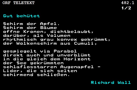 """Screenshot des Gedichtes """"Gut behütet"""""""