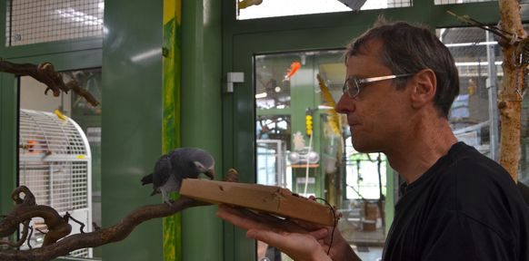 Martin Breindl mit Papagei und Kartonschachtel