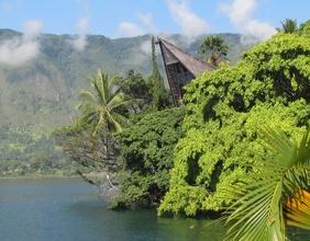 Insellandschaft, exotische Bäume