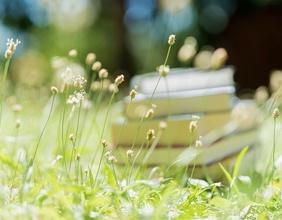 Buch mit Wiese